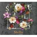 Giấy Dán Tường Stella